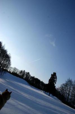 絶好調な雪山トレッキング21