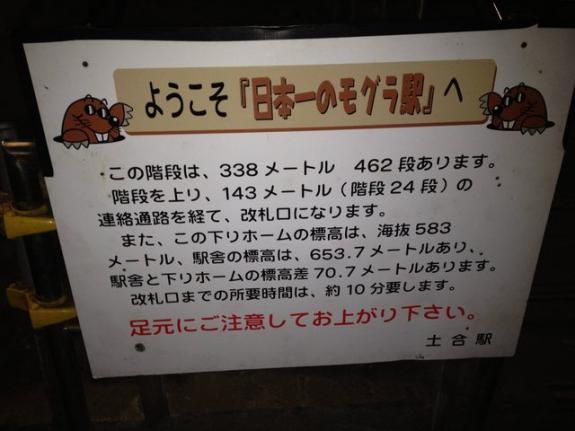 307.jpg