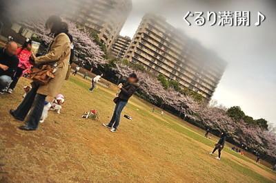 DSC_5737-キャバリ男サス家ブログ用(斜めグランド)