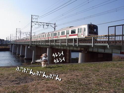 R0013230.jpg