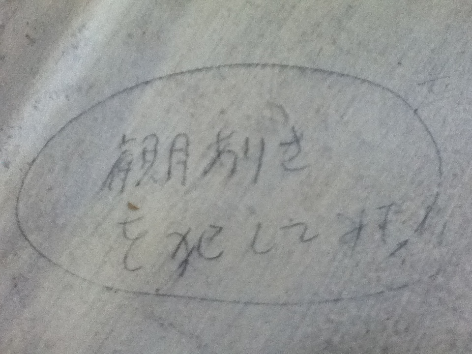 上野毛・観月ありさ2012.jpg