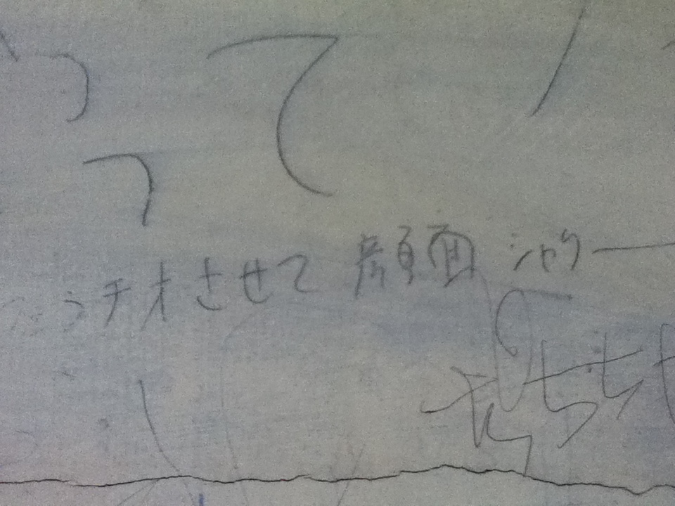 上野毛・顔面シャワー2012.jpg