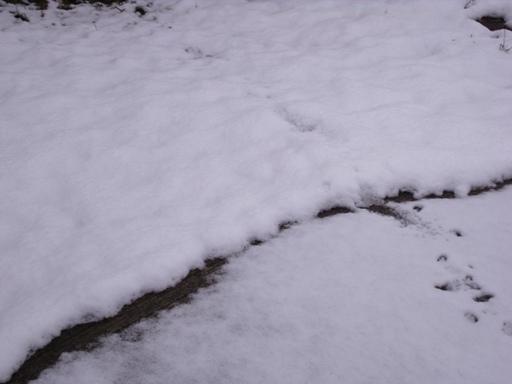 1001113雪の日07
