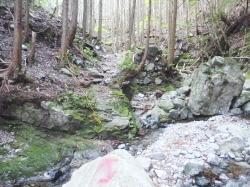 栗ノ木岳への登山道