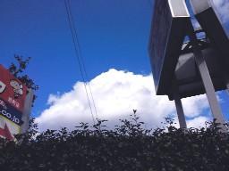 201002061332ss.jpg