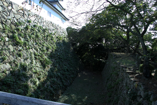 20090906_hikone_castle-73.jpg
