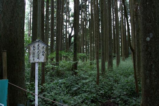 20090922_iwamura_castle-49.jpg