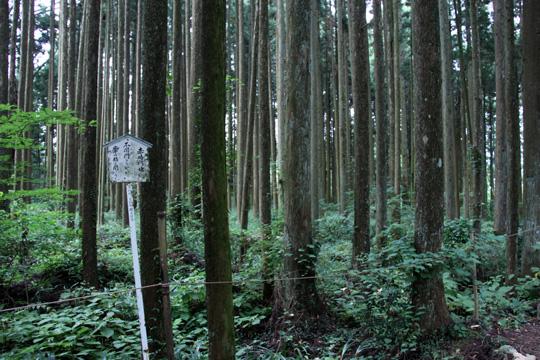 20090922_iwamura_castle-51.jpg