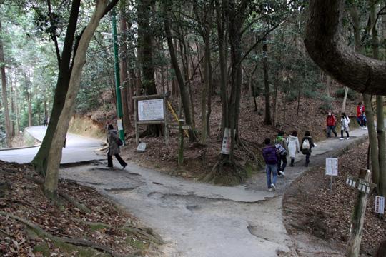 20100110_iwakuni_castle-07.jpg