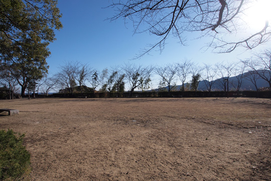 20110108_shingu_castle-04.jpg