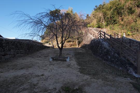 20110108_shingu_castle-08.jpg