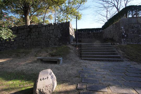 20110108_shingu_castle-15.jpg