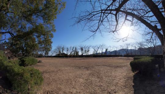 20110108_shingu_castle-17.jpg