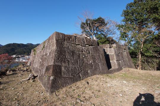 20110108_shingu_castle-34.jpg