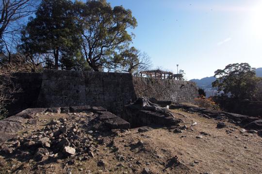 20110108_shingu_castle-37.jpg
