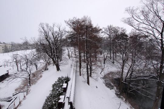 20110110_echigo_takada_castle-13.jpg