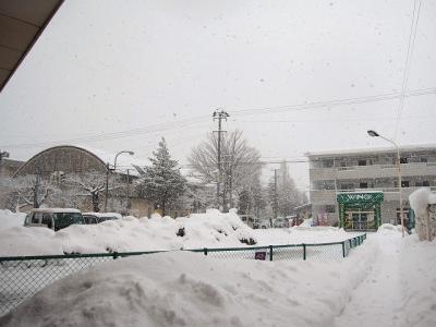 2月11日の天気