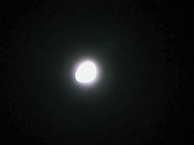 画像 20091229 224-1