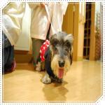 smileDSC_0063_20091112144549.jpg