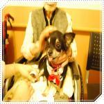 smileDSC_0096_20091112144654.jpg