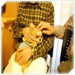 smileDSC_0097_20091112144654.jpg