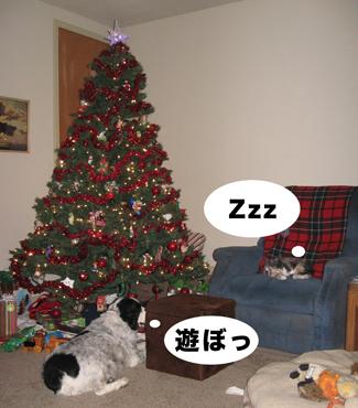 BC_tree.jpg