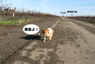 F_walking.jpg
