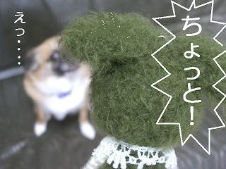2.2011.05.25.あみちゃんvsポチ 021 blog
