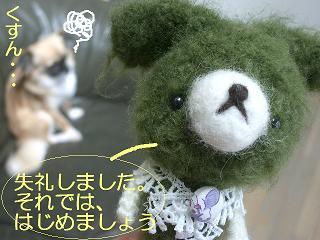 2.2011.05.25.あみちゃんvsポチ 011 blog