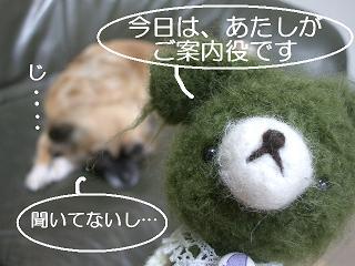 2.2011.05.25.あみちゃんvsポチ 017 blog