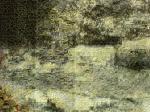 DSC00433_20100118162022.jpg