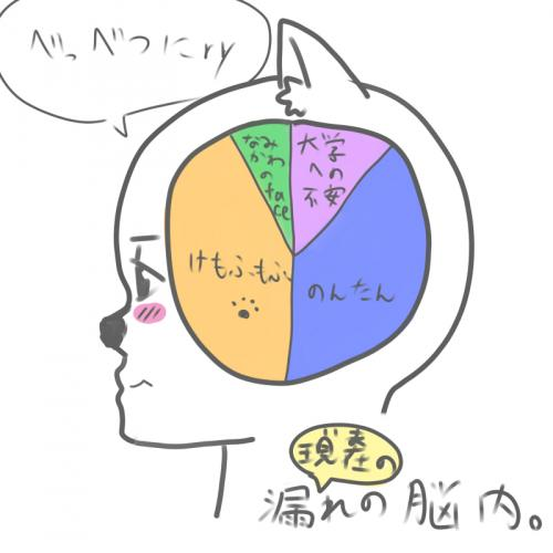 E427.jpg