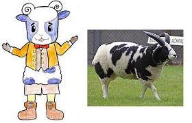 ポコポッテイト・メーコブ&ジャコブ羊