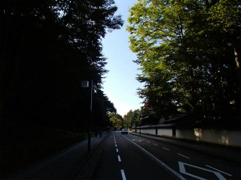 PA130769.jpg