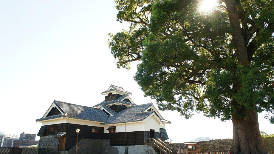 飯田丸櫓の裏から_1