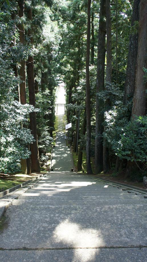 春日神社石段