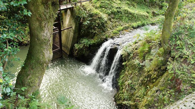 名所・鶯の滝