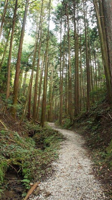 大谷吉継公の墓への林道