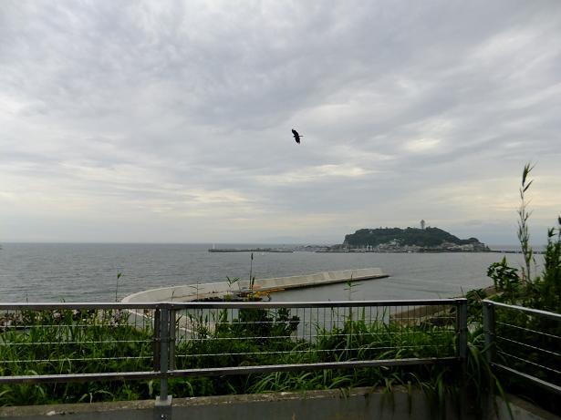 江の島・遠景
