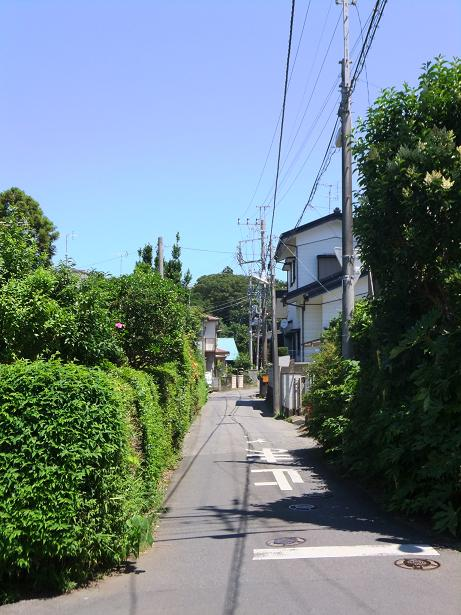 臼井城への道