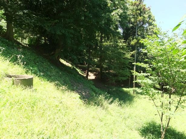 一の郭・西側斜面
