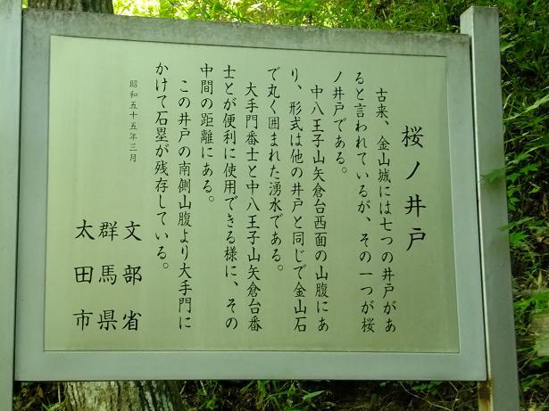 桜の井戸2