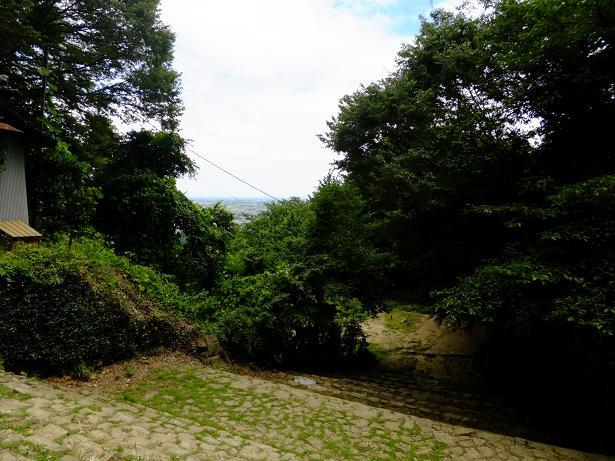 新田神社からの眺望