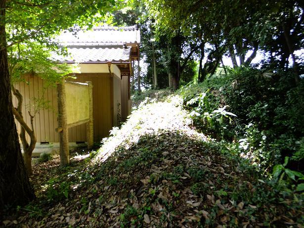 諏訪神社の裏の土手