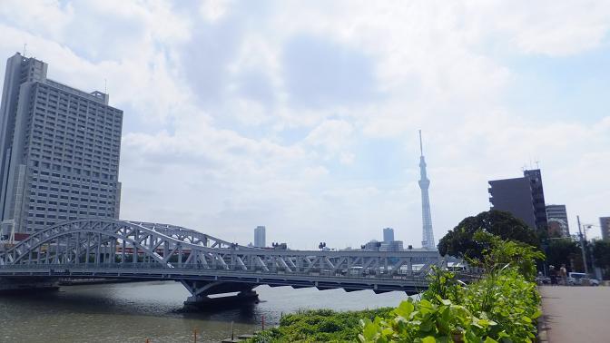 正喜橋から荒川