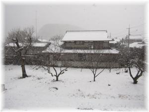 2010.2月京都雪2