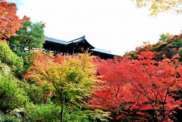 DSC_0699東福寺