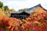 東福寺DSC_0578