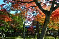 東福寺DSC_0672