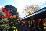 東福寺DSC_0654